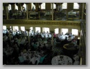 Thumbnail image for /Images/Gallery/Reunion/2006/Riverboat/Web/17.jpg